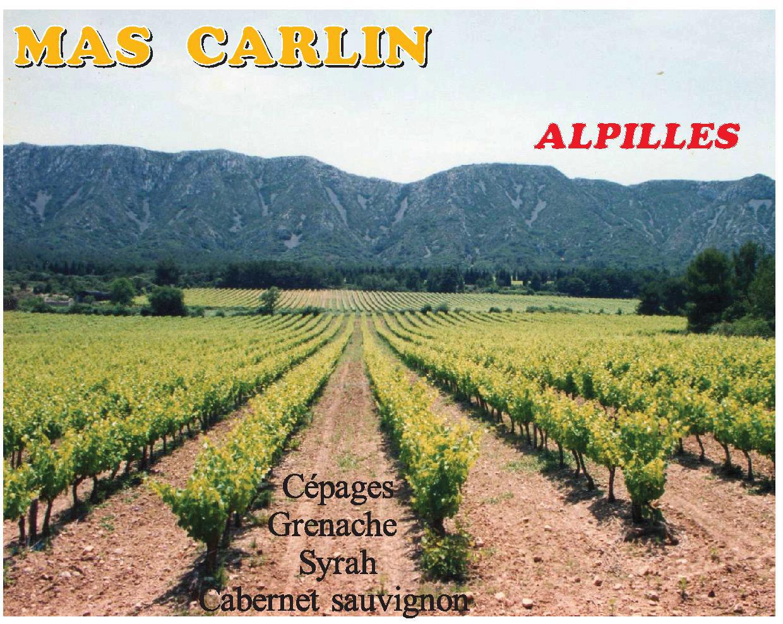 vignes-alpilles-provence-saint-remy